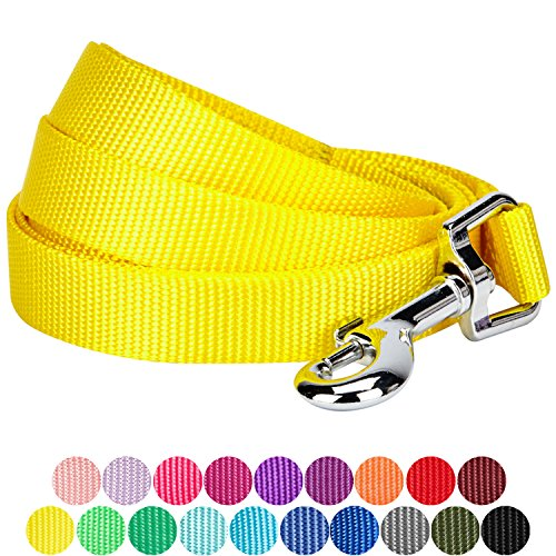 Blueberry Pet 19 Colors Durable Classic Dog Leash 5 ft x 3/8'', Blazing Yellow, X-Small, Basic Nylon Leashes for Puppies by Blueberry Pet