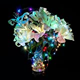 Eastchina | Multi-color 10m/33ft 100 Leds Copper Wire LED Starry Light | LED Copper Wire Lights | LED String Lights | with 12v Adapter | with LED Mini Dimmer