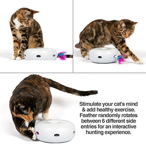 PetFusion Ambush Interactive Cat Toy with Electronic Rotating Feather. (Smart Modes, Nighttime Light, Batteries Included) … 4