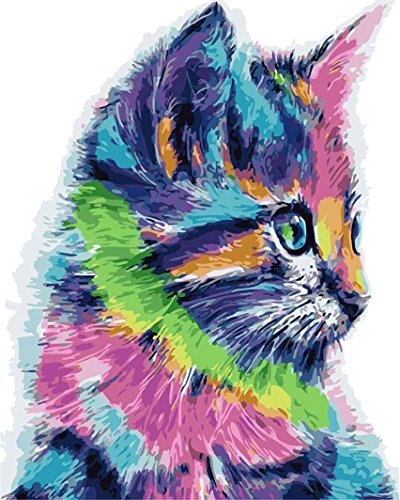 Colorful Cat (Morgofun DIY Painting Paint by Numbers for Adults Beginner, Paint by Number Kit Colorful Cat DIY Painting 16x20inch)