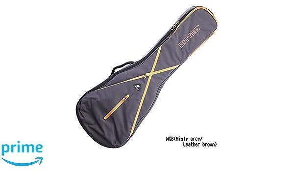 Ritter Reunión 7 carcasa para guitarra eléctrica tipo Les Paul, de color gris oscuro: Amazon.es: Instrumentos musicales