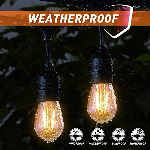 Outdoor Fall String Lights - 3