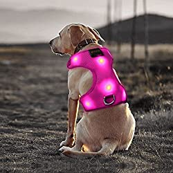 Bseen Comfort Control Dog Harness LED Pets Walking Accessory USB Rechargeable Soft Mesh Vest with Adjustable Belt Padded Lightweight Collar for Dogs Puppies (Small, Rose Red)