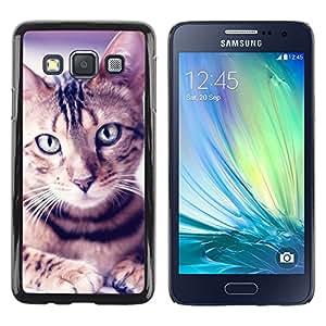 TopCaseStore / la caja del caucho duro de la cubierta de protección de la piel - Egyptian Mau Manx Ocicat Portrait Cat - Samsung Galaxy A3 SM-A300