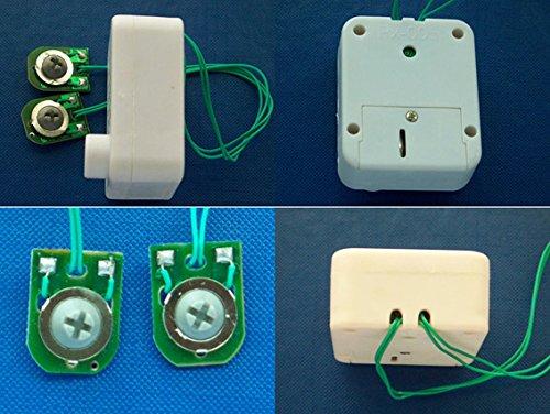 Módulo de voz y sonido para peluches y juguetes, hasta 60 segundos, color blanco -: Amazon.es: Instrumentos musicales