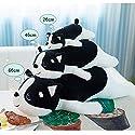抱き枕 ぬいぐるみ 犬 かわいい 動物 おもちゃ クッション ワンちゃん 萌え 背当て枕 プレゼント 大きい ふわふわ オフィス用 お誕生日 お祝い 赤ちゃん 人形 女の子 お誕生日 彼女 ギフト 黒白 3点セット