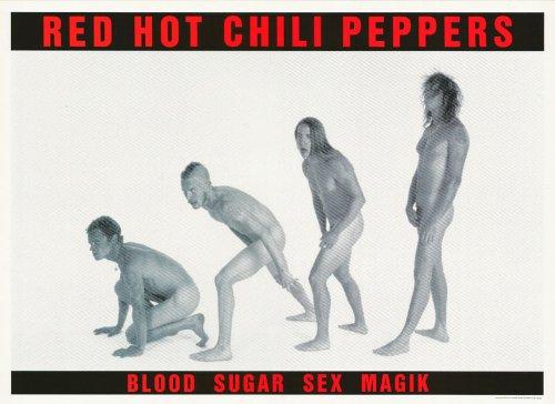 blood sugar sex magik poster