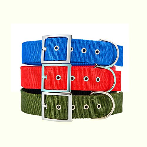 Adjustable Metal Buckle Dog Collar for Medium Large XLarge Dogs, Classic Solid Color Tough Nylon Collar, Neck 14