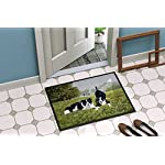 Caroline's Treasures FRF0014JMAT Let's Play Border Collie Indoor or Outdoor Mat 24x36, 24H X 36W, Multicolor 4