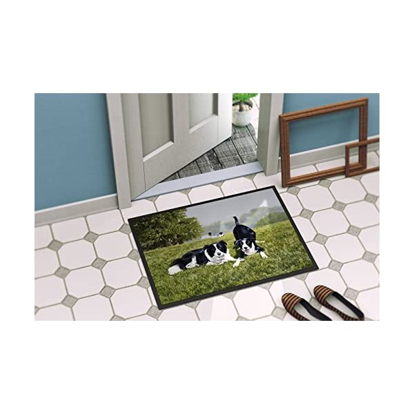 Caroline's Treasures FRF0014JMAT Let's Play Border Collie Indoor or Outdoor Mat 24x36, 24H X 36W, Multicolor 2