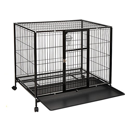haige pet heavy duty dog crate large metal wire pet cage kennel wwheels u0026 tray black by haige pet