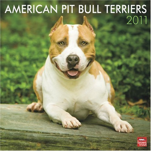 Bull Terrier 2010 Calendar - American Pit Bull Terriers 2011 Square 12X12 Wall by BrownTrout Publishers Inc (2010-08-01)