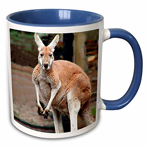 Red Kangaroo Mug <br>11oz Two-Tone Blue Mug
