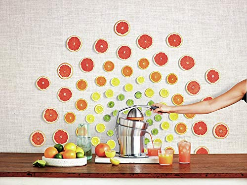 Breville the Citrus Press Pro One-Hand Automatic Citrus Juicer - 800CPXL by Breville (Image #5)
