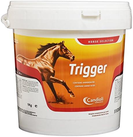 Candioli Trigger 1 kg