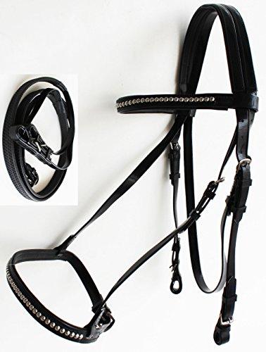 Noseband Bridle - PRORIDER Equine Horse Biothane English Bridle Noseband Tack Reins Black 40HS72BK
