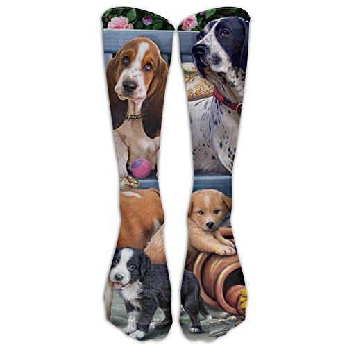 Soccer Player Costume For Dogs (Dogs On A Bench Athletic Tube Stockings Sports For Outdoor Women Men Classics Knee High Socks Sport Long Sock One Size)