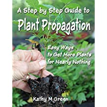 Step by Step Guide to Plant Propagation