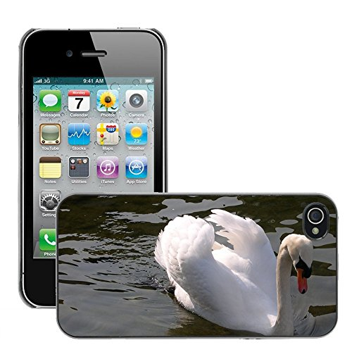 Bild Hart Handy Schwarz Schutz Case Cover Schale Etui // M00135777 Swan Tier Zürichsee Wasser // Apple iPhone 4 4S 4G