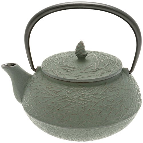 Iwachu Japanese Iron Tetsubin Teapot with ''Rikyu Green'' Pine Needle, Burgundy/Lichen Green by Iwachu