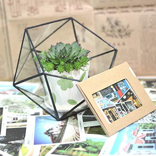 BROSCO 2pcs Tabletop Succulent Planter Artistic Glass Geometric Terrarium Box Pot ()