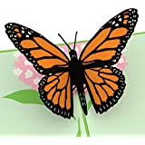 Lovepop Butterfly Pop Up Card, 3D Card, Mother's Day Card, Birthday Card, Spring Card