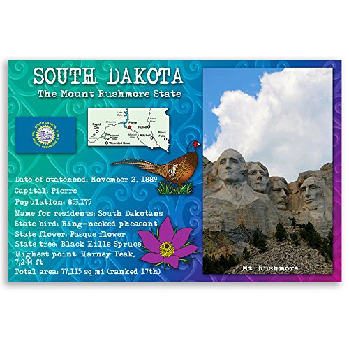 Premium South Sd Card (SOUTH DAKOTA STATE FACTS postcard set of 20 identical postcards. Post cards with SD facts and state symbols. Made in USA.)