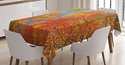 Leaves Decor Tablecloth by Ambesonne, Falls Colors in National Country Park Nature Observation Base Perspective Photo, Dining Room Kitchen Rectangular Table Cover, 52 X 70 Inches Fall Leaves Photo