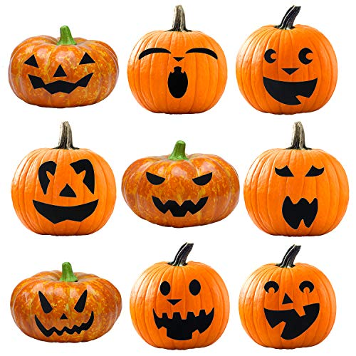 Elcoho Pumpkin Decorating Craft Kits Halloween Pumpkin Stickers Makes 9 Pumpkins -