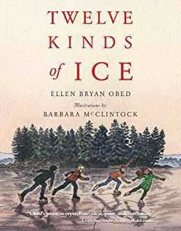 Twelve Kinds of Ice by [Obed, Ellen Bryan]