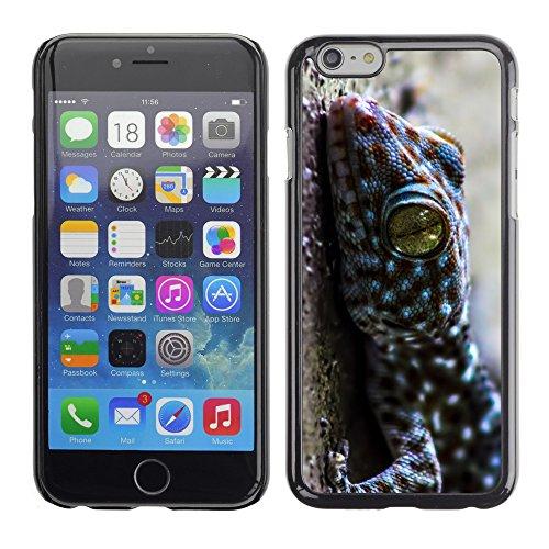 "Premio Sottile Slim Cassa Custodia Case Cover Shell // V00003336 gecko thailande // Apple iPhone 6 6S 6G 4.7"""