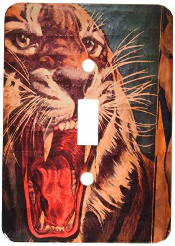 3dRose LLC lsp_89300_1 Florida, Sarasota, Ringling Museum, Circus Museum Us10 Wbi0588 Walter Bibikow Single Toggle Switch