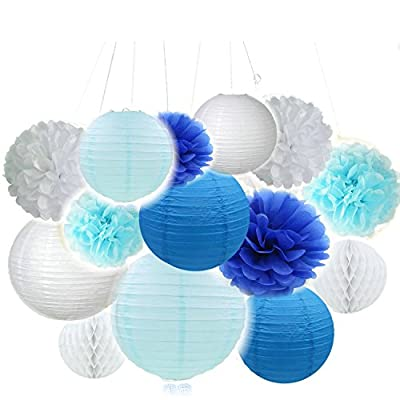 Fascola 12 pcs White Blue Tissue Hanging Paper Pom-poms, Hmxpls Flower Ball Wedding Party Outdoor Decoration Premium Tissue Paper Pom Pom Flowers Craft Kit