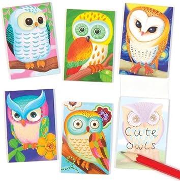 Cuadernos de Notas perfumados con diseño de búhos - Juguetes Bolsas Sorpresa para niños (Pack de 12): Amazon.es: Juguetes y juegos