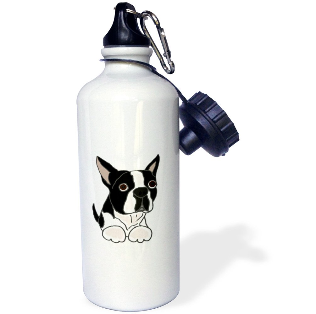 21oz Multicolor 3dRose Cute Boston Terrier Puppy Dog Original-Sports Water Bottle wb/_216347/_1 21 oz