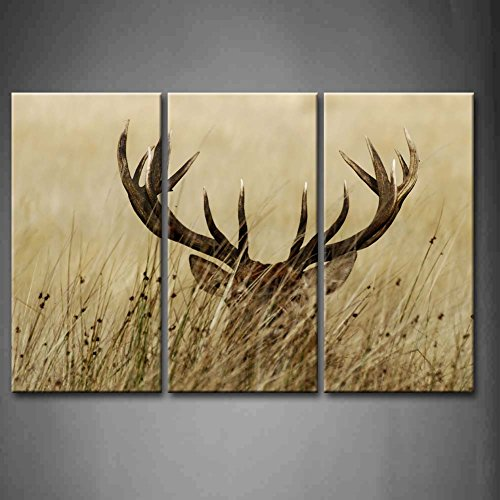 3 Panel Wall Art Deer Stag With Long Antler In The Bushes Painting The Picture Print On Canvas Animal Pictures For Home Decor Decoration Gift piece (Stretched By Wooden Frame,Ready To (Deer Canvas)