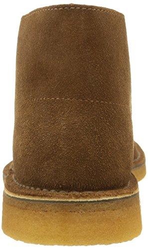 Originals Uomo Stringate Clarks Marrone Scarpe Boot cola Desert pFgFxdWwq