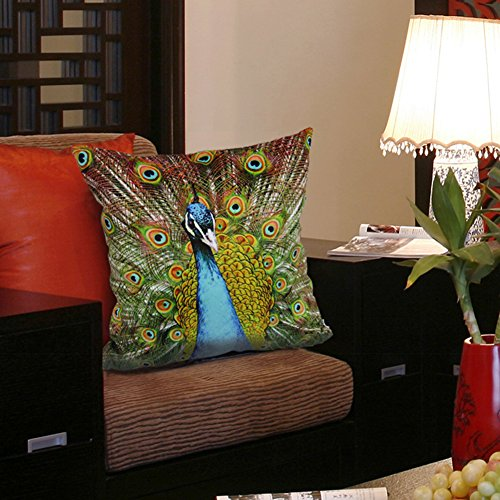 MeMoreCool Pillow Cover Peacock Flowers Countryside Velvety No Filler 20 X 20 Inch