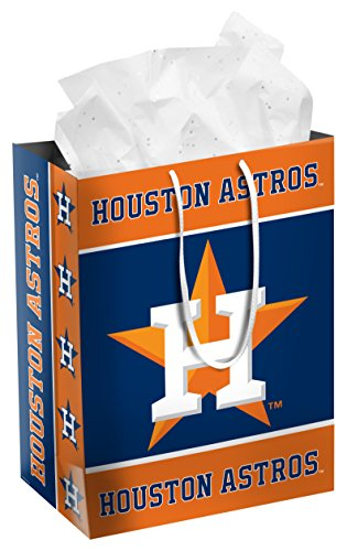MLB Houston Astros2014 Medium Gift Bag, Houston Astros, (Mlb Medium Gift Bag)