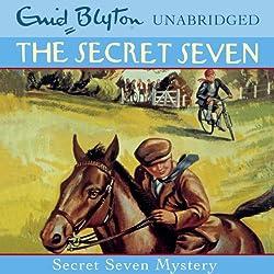 Secret Seven: 9