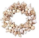 Assorted Shell Wreath on Vine Base