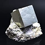Pyrite Cube on Basalt From Navajun, Spain - PB18