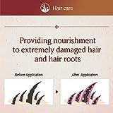 Ryoe Korean Herbal Anti Hairloss Damaged Hair