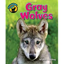 Gray Wolves (Wild Canine Pups)