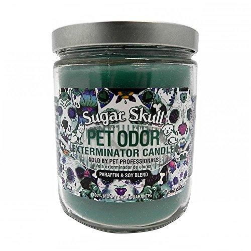 Pet Odor Exterminator Candle, Sugar Skull,13 oz (Sugar Skull Cat)
