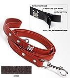 Rockin Doggie Plain Leather Dog Leash, 1/2 by 5-Feet, Brown