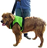 Vivaglory Dog Lift Harness - Front Assist Lifting Harness - Support Vest Harness - Mobility Rehabilitation Sling Harness - Canines Aid for Senior Arthritis Disable Hiking Pets - Green - L