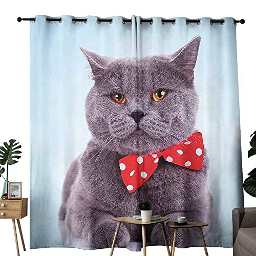 duommhome Cat Decor Blackout Curtain Tuxedo Gray Scottish Fold Theme with Red White Polka Dots Tie Bow Baby Blue Fun Block Most Light and Ultraviolet Light W84 xL72 Sky Blue Dimgrey -