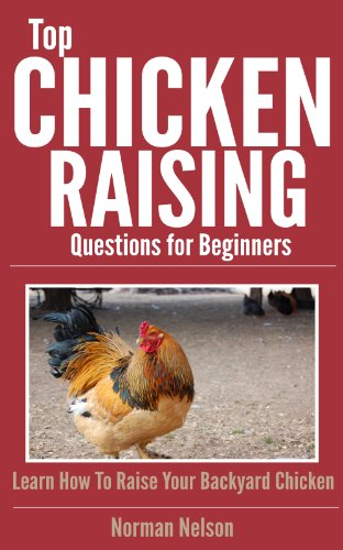 Top Chicken Raising Questions for Beginners: Learn How To Raise Your Backyard Chicken by [Nelson, Norman]