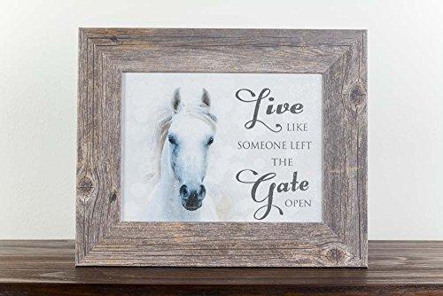 Summer Snow Live Like Someone Left The Gate Open Western Horse White Restored Framed Art (Driftwood Frame) - Framed Art Horses